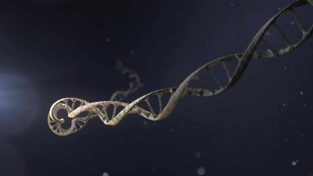 DNA Wide Shot
