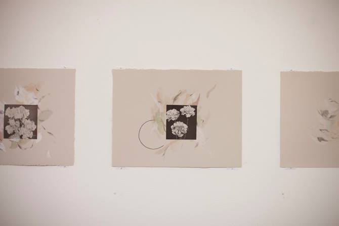 Image Credit: from Rebecca Orchard's exhibition ~ Rose Vision at Paper Mountain, 2015
