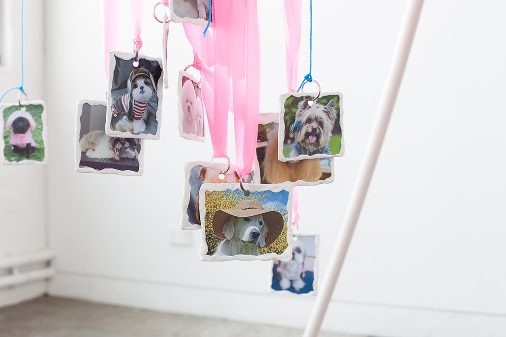 Image: Danielle Reynolds, Canine Horizons, Installation detail by Kirsty Macafee, 2016