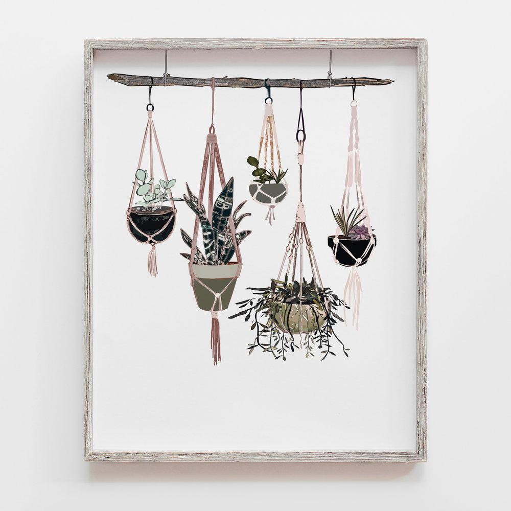 HangingSucculents_portfolio.jpg