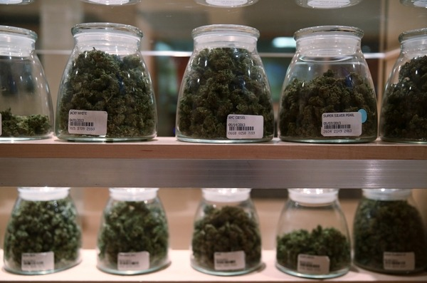 rollingstone :      The Obama administration has announced it won't fight the states that have legalized marijuana.