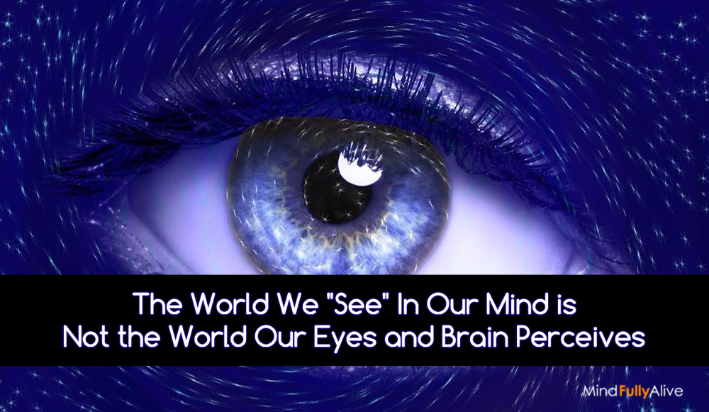 "The World We ""See"" In Our Mind is Not the World Our Eyes and Brain Perceives"