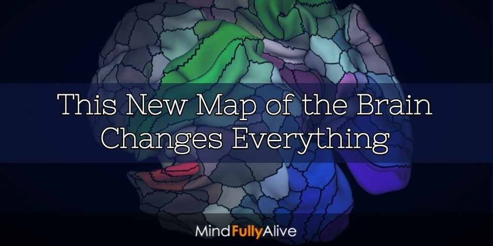 A New Map and Understanding of the #Brain