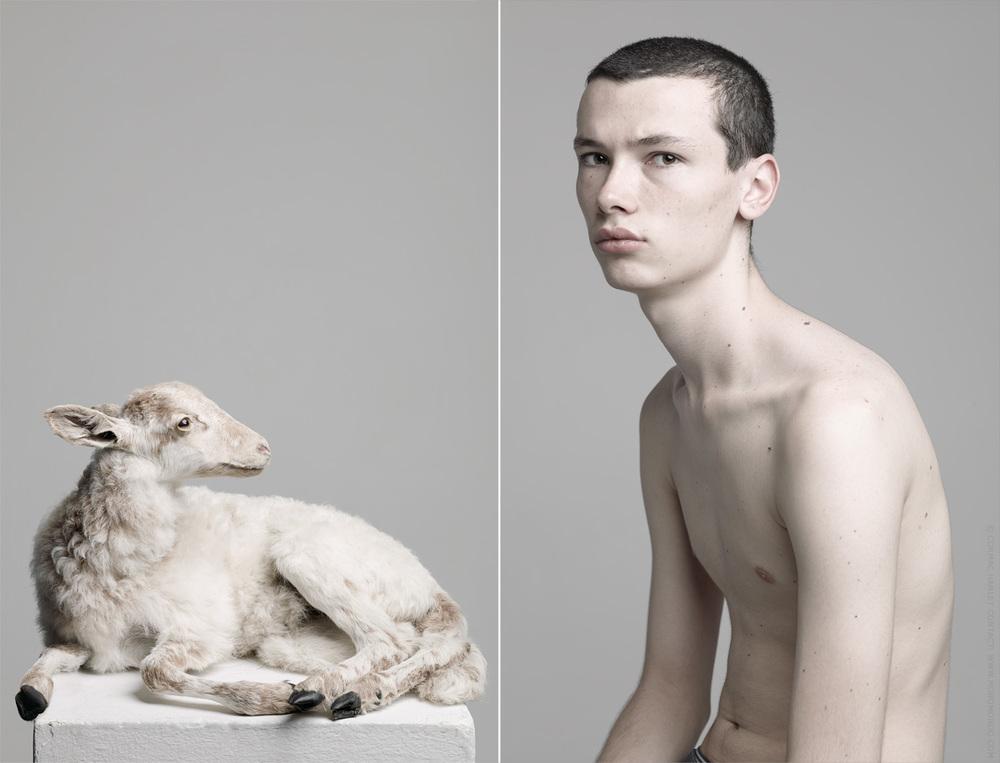 Lamb-tx.jpg