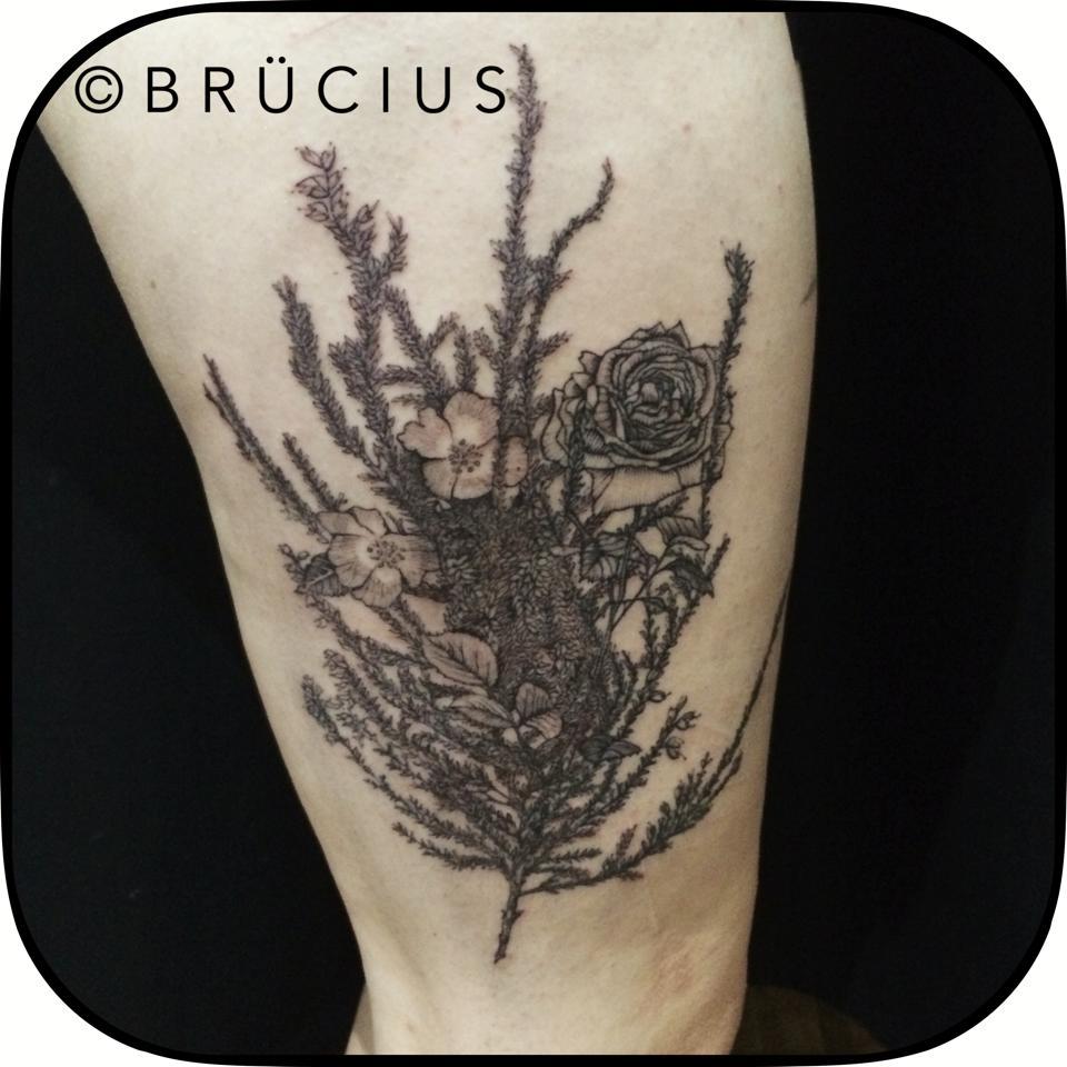 Brucius-216.jpg