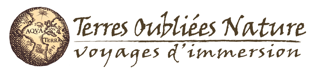 Logo Terres Oubliées Nature.jpg