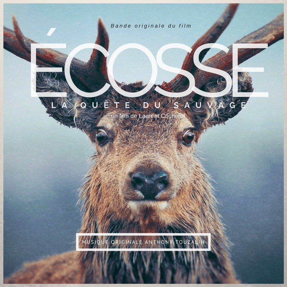 Album Ecosse VERSO.jpg