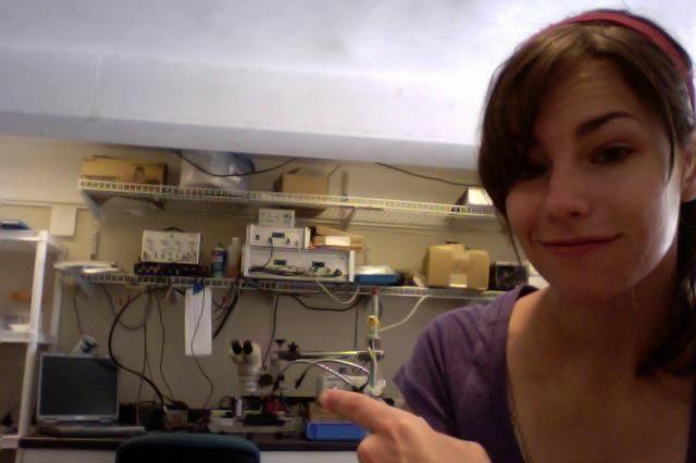 Ashley Stoehr, University of Massachusetts Dartmouth