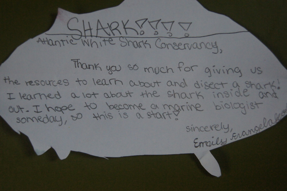 Thank you note from a child who attended Mass Audubon camp through our scholarship program.