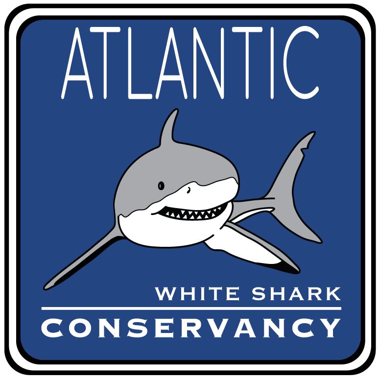 Download Sharktivity — Atlantic White Shark Conservancy on