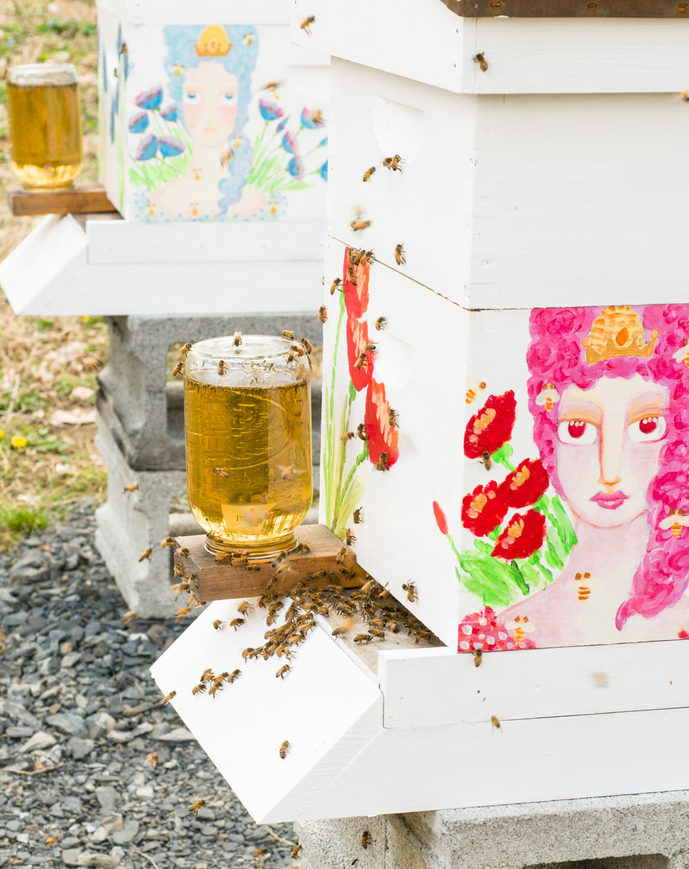 Beekeeping Class | Amy Roth Photo.jpg
