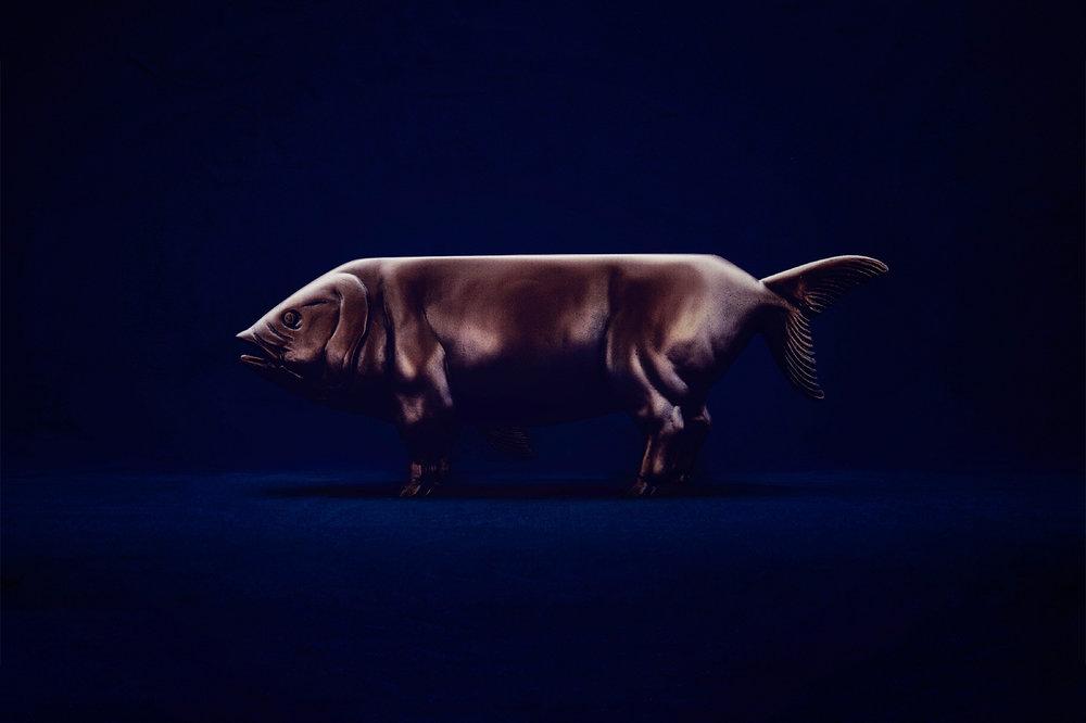 Sea Pig.jpg