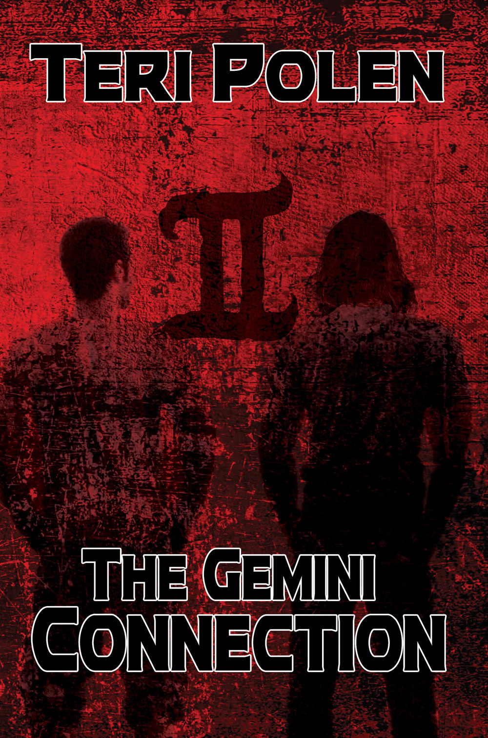 The Gemini Connection eimage.jpg