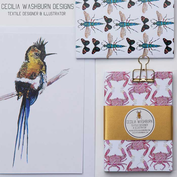 Cecilia Washburn Designs