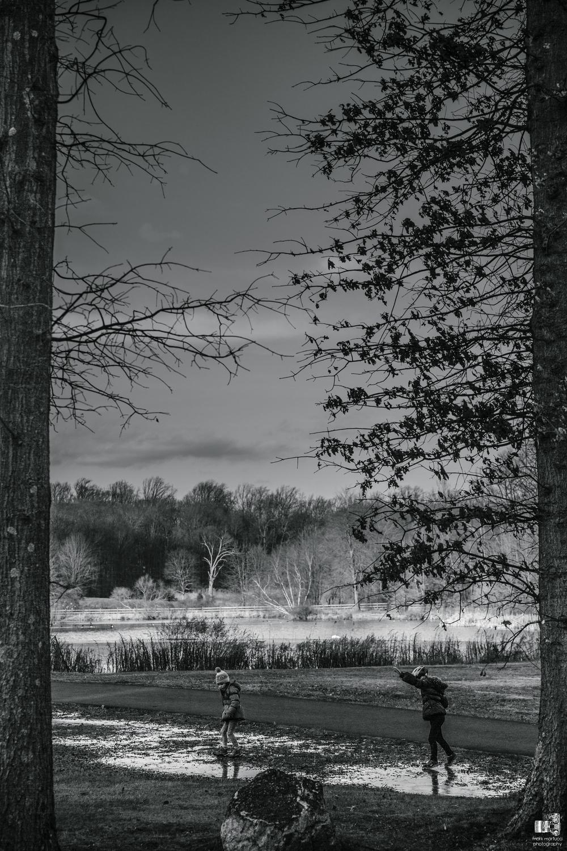 january hike (4).jpg