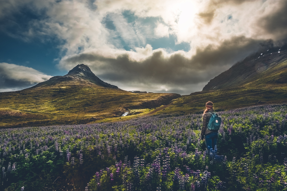 Jess in Súðavík.jpg