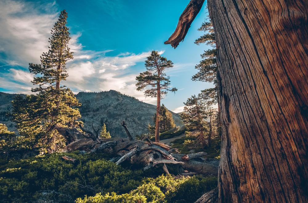 desolation wilderness (14).jpg