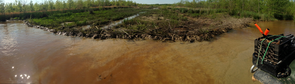 Beaver Dam 2.JPG