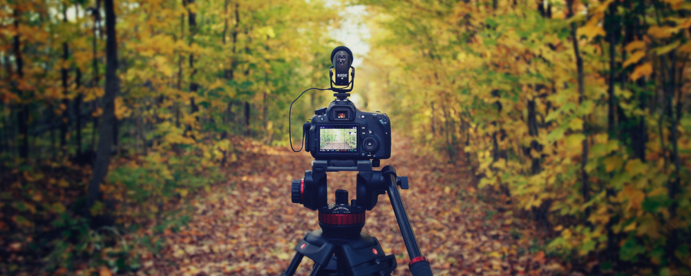 CameraBack_Banner.jpg
