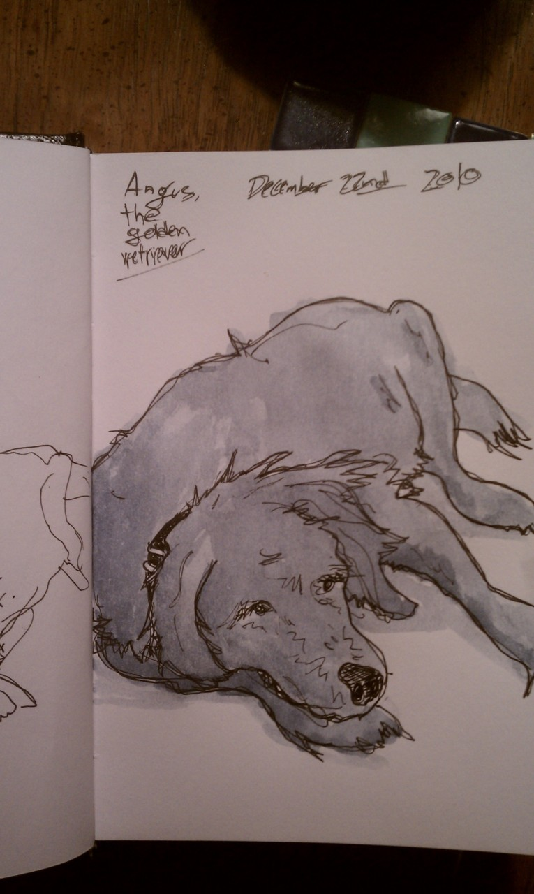 Trying to draw the shaggy girth that is my parent's golden retriever…