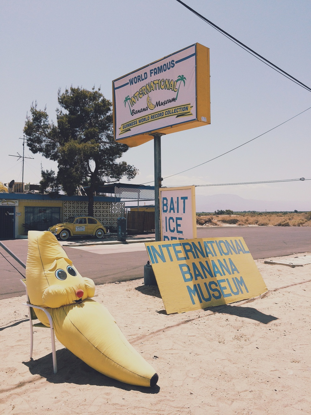 International Banana Museum