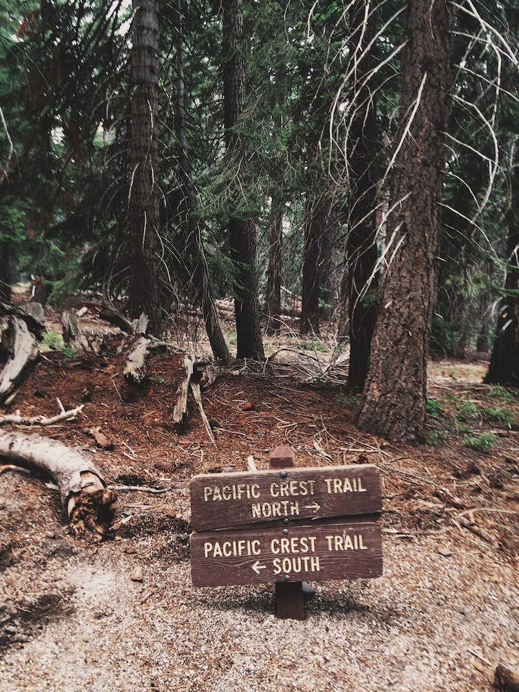 The Pacific Crest Trail runs more than 2,600 miles from Mexico to Canada.