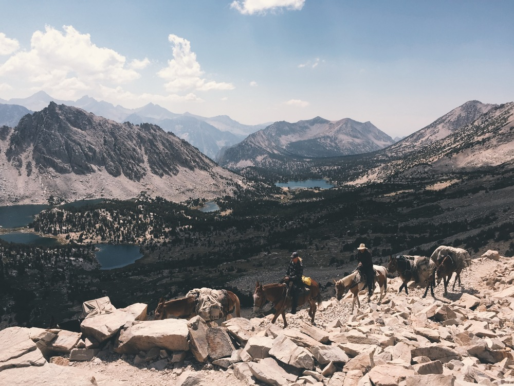 A mule train coming up Kearsarge Pass from Kings Canyon National Park.