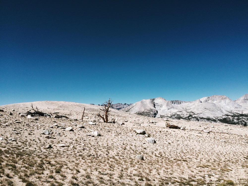 Bighorn Plateau.