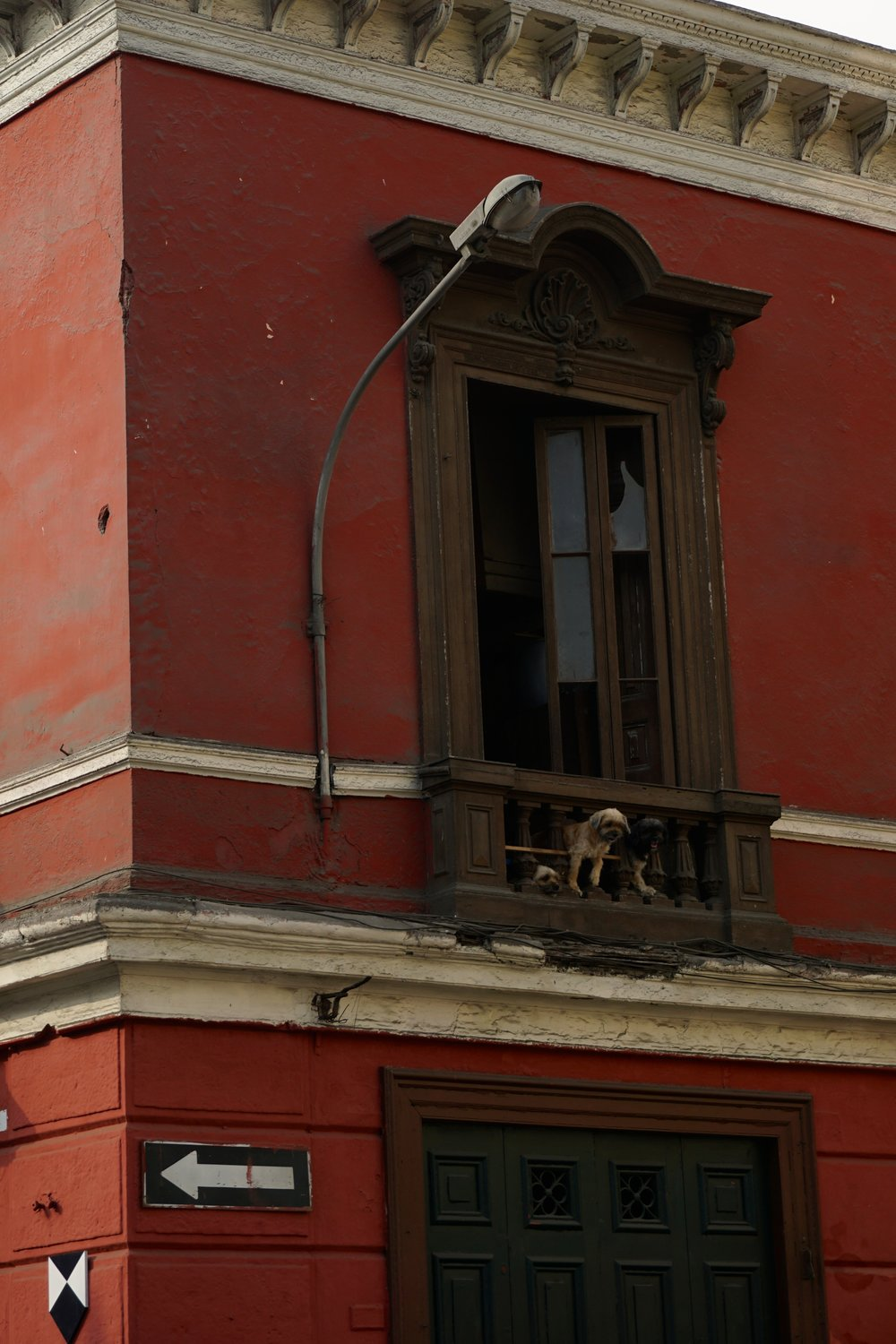 Three dogs in a balcony in Lima's historic core.