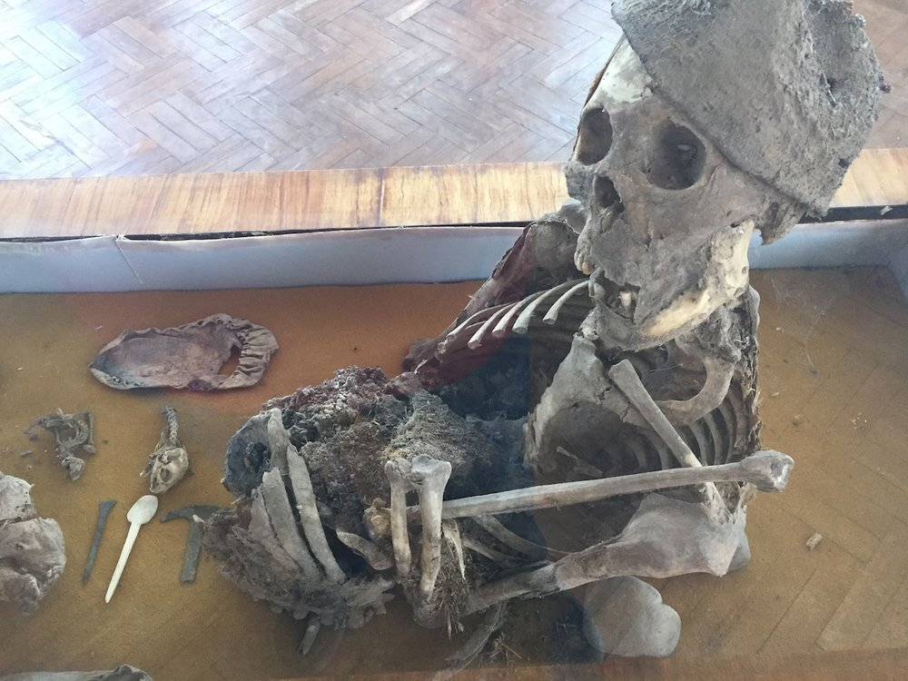 A partly mummified remain from the high Andes.