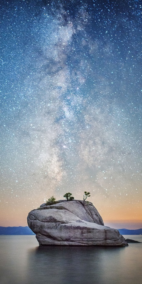 14Bonsai Rock Milky Way - Vertical.jpg