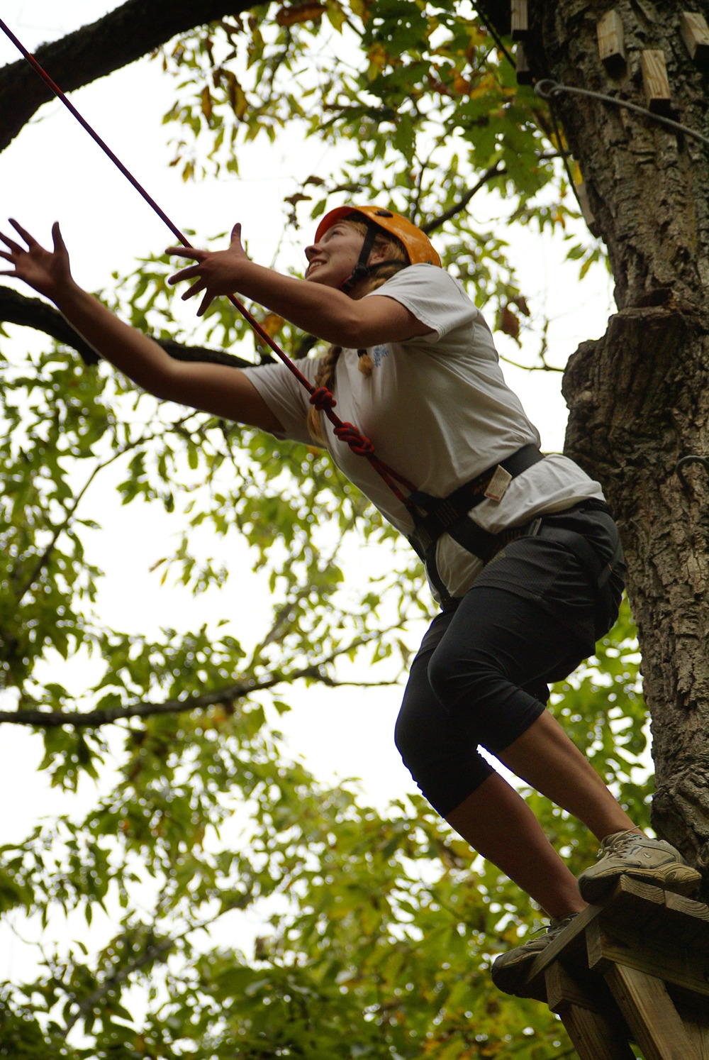 pole climb 2.JPG