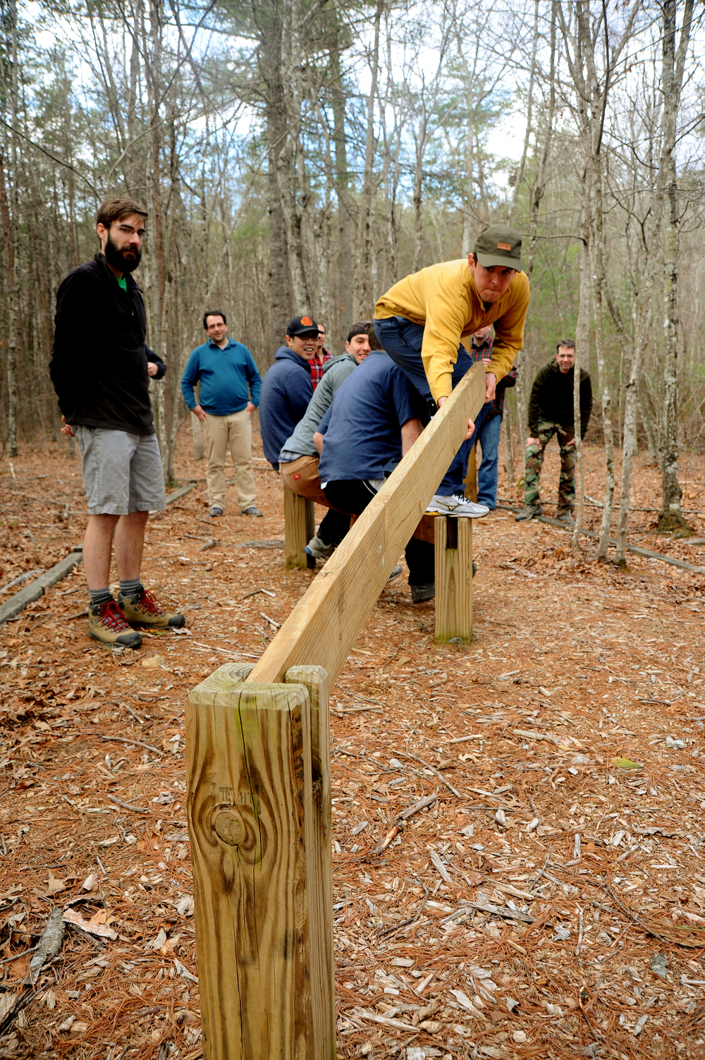 Teambuilding And Low Elements Course Wilderness