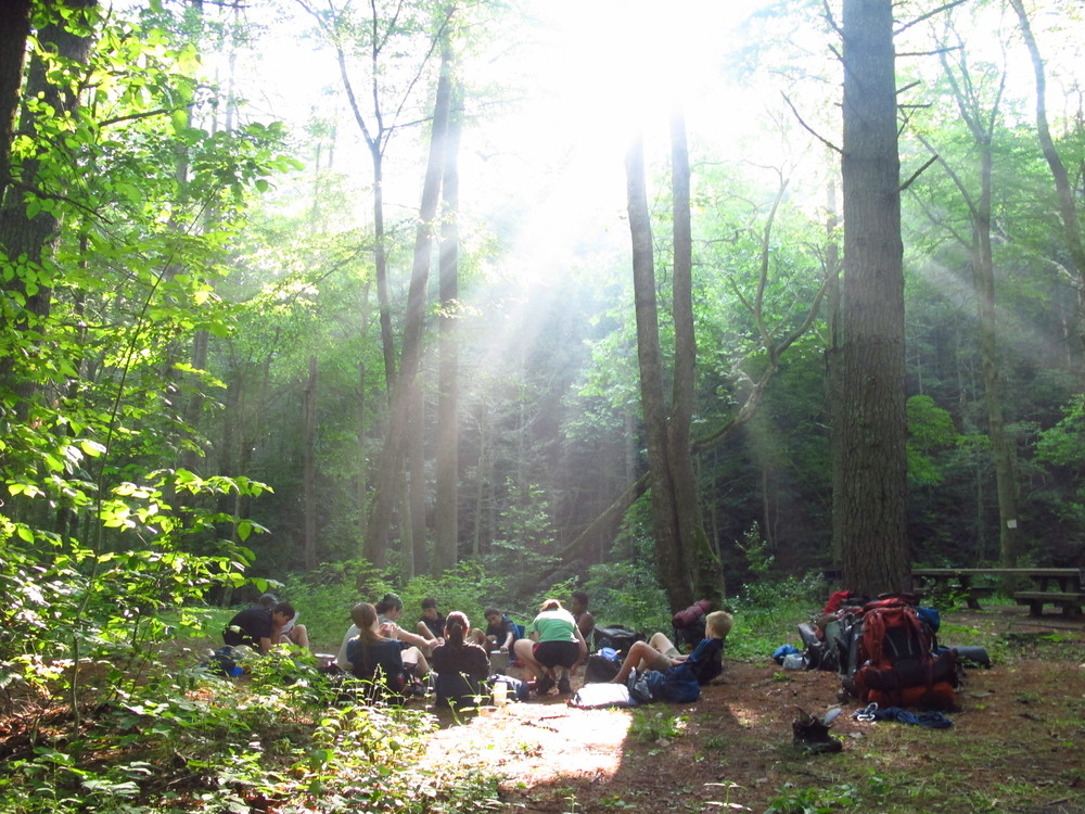 Sunny Camping Spot.jpg