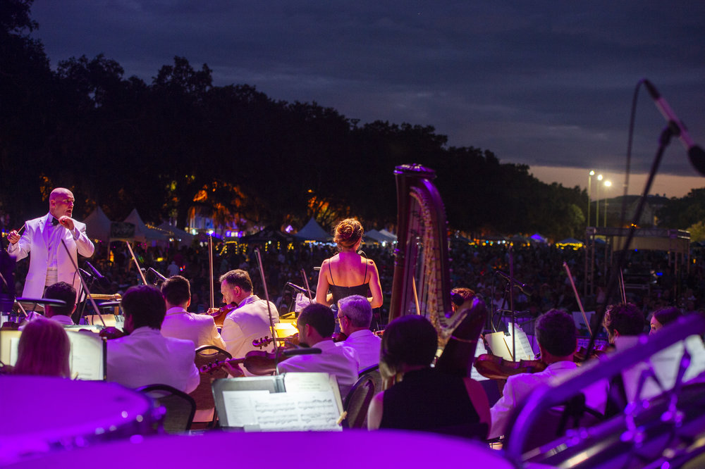 Geoff L Johnson - Picnic in the Park, Savannah Philharmonic