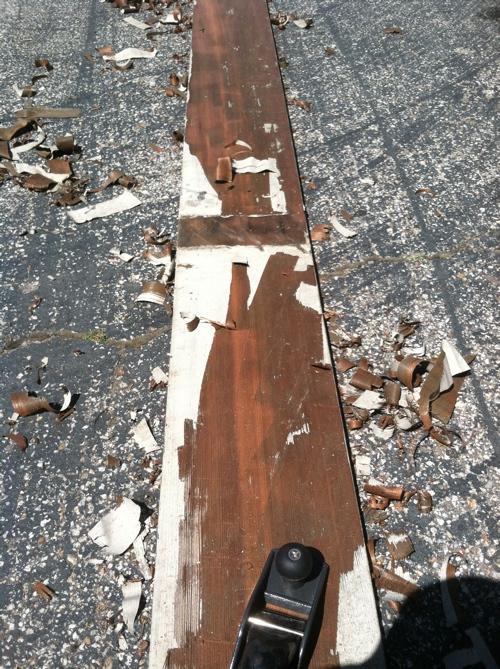 curlcult plank2.JPG