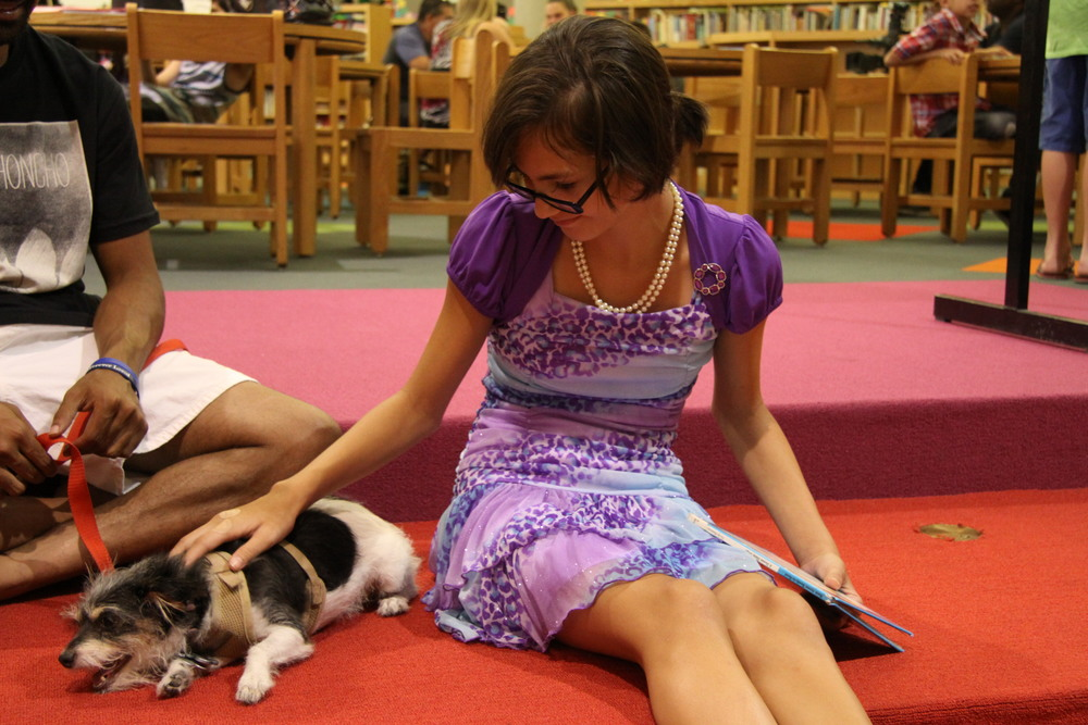 A student rewards one of Marley's Mutts for being a great reading partner.