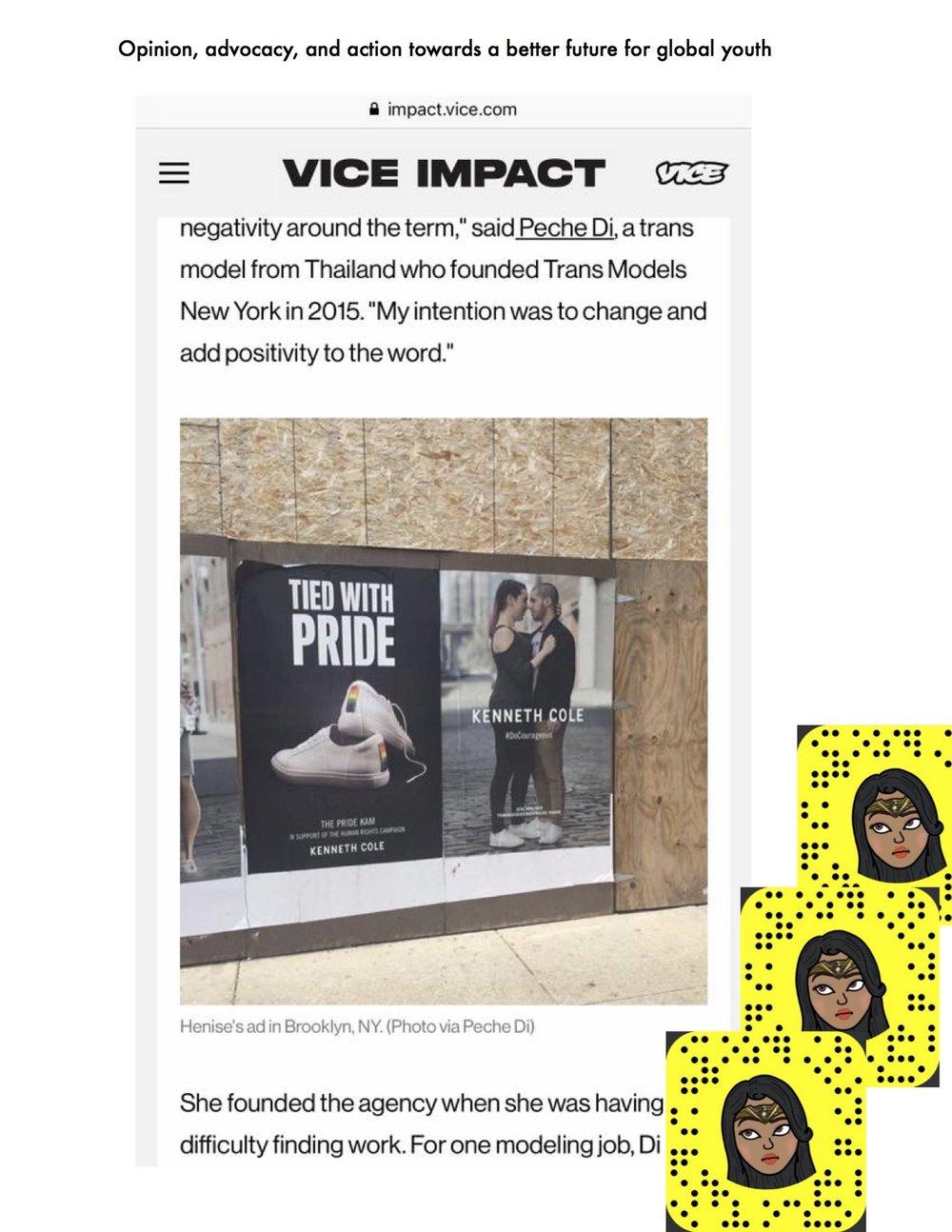 vice impact