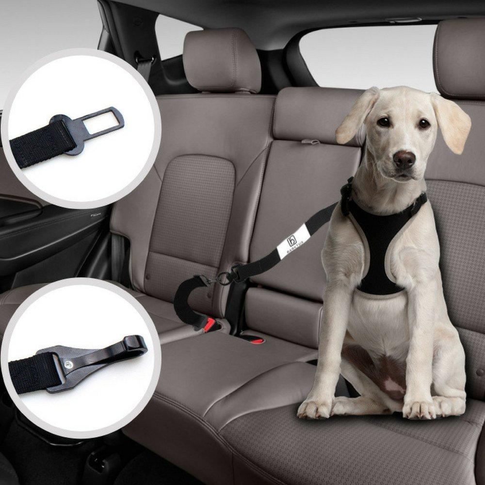 Source : Barktus Dog Seat Belt From Amazon.com