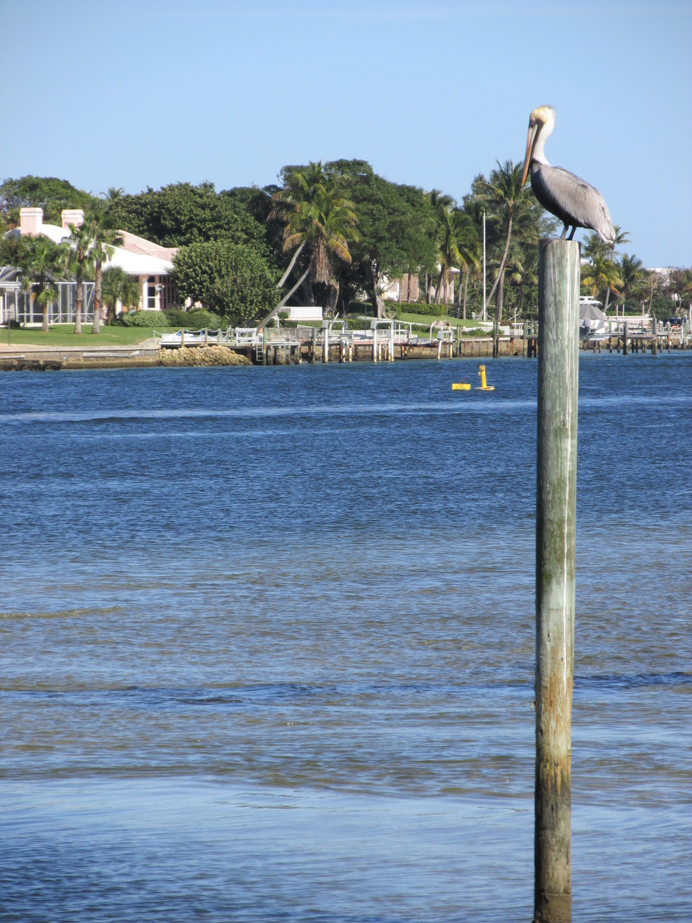 Florida2014 050.JPG