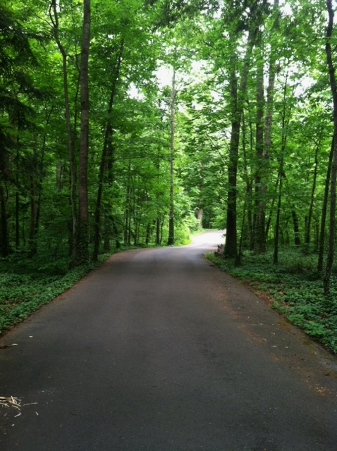 Tennessee Walking Path.jpg