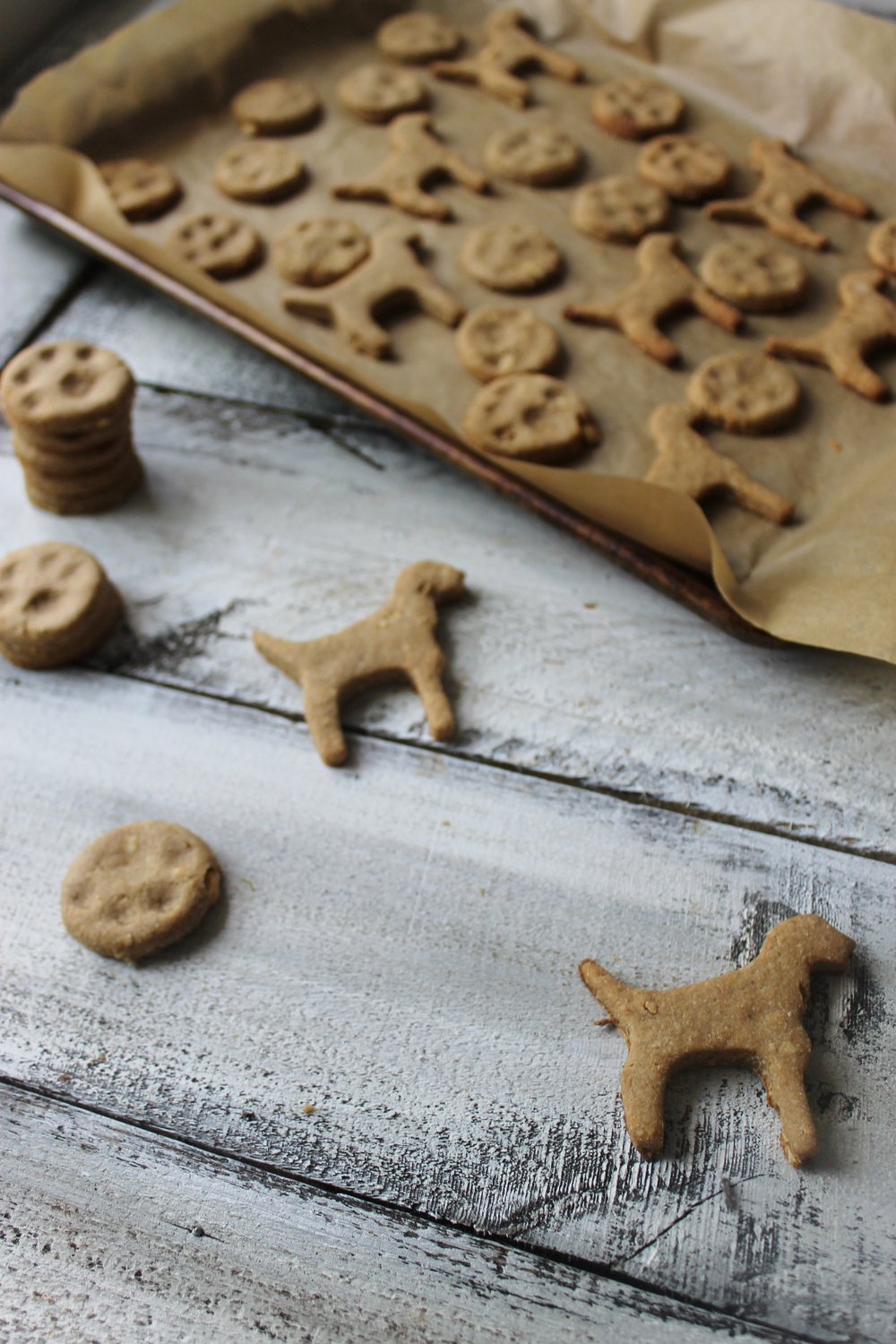 peanut butter, honey, and banana dog treats.jpg