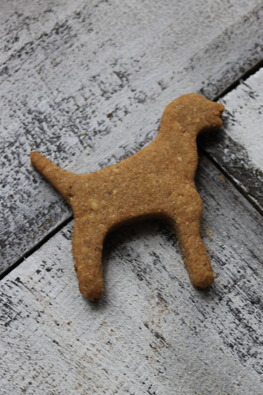 homemade dog treats.jpg