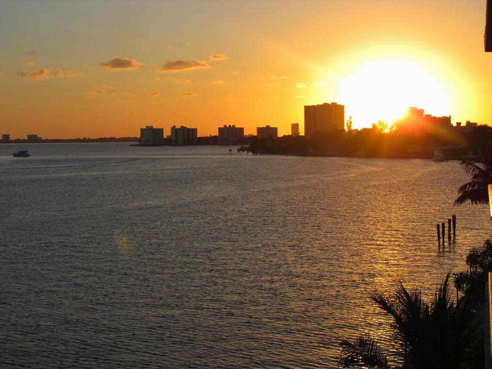 Miami: My Diary of Us