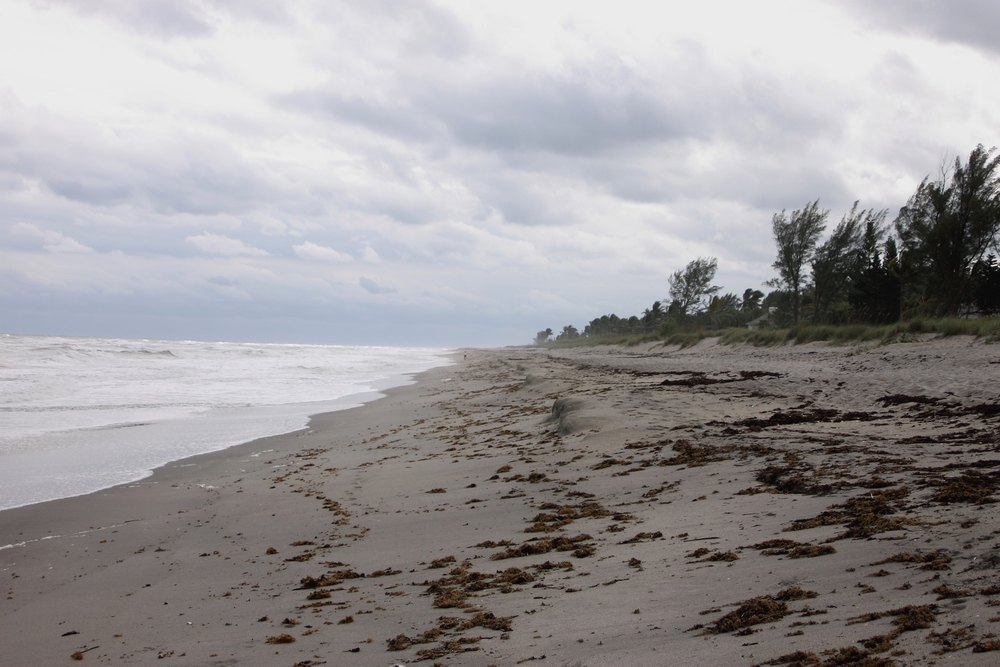 Hobe Sound: My Diary of Us