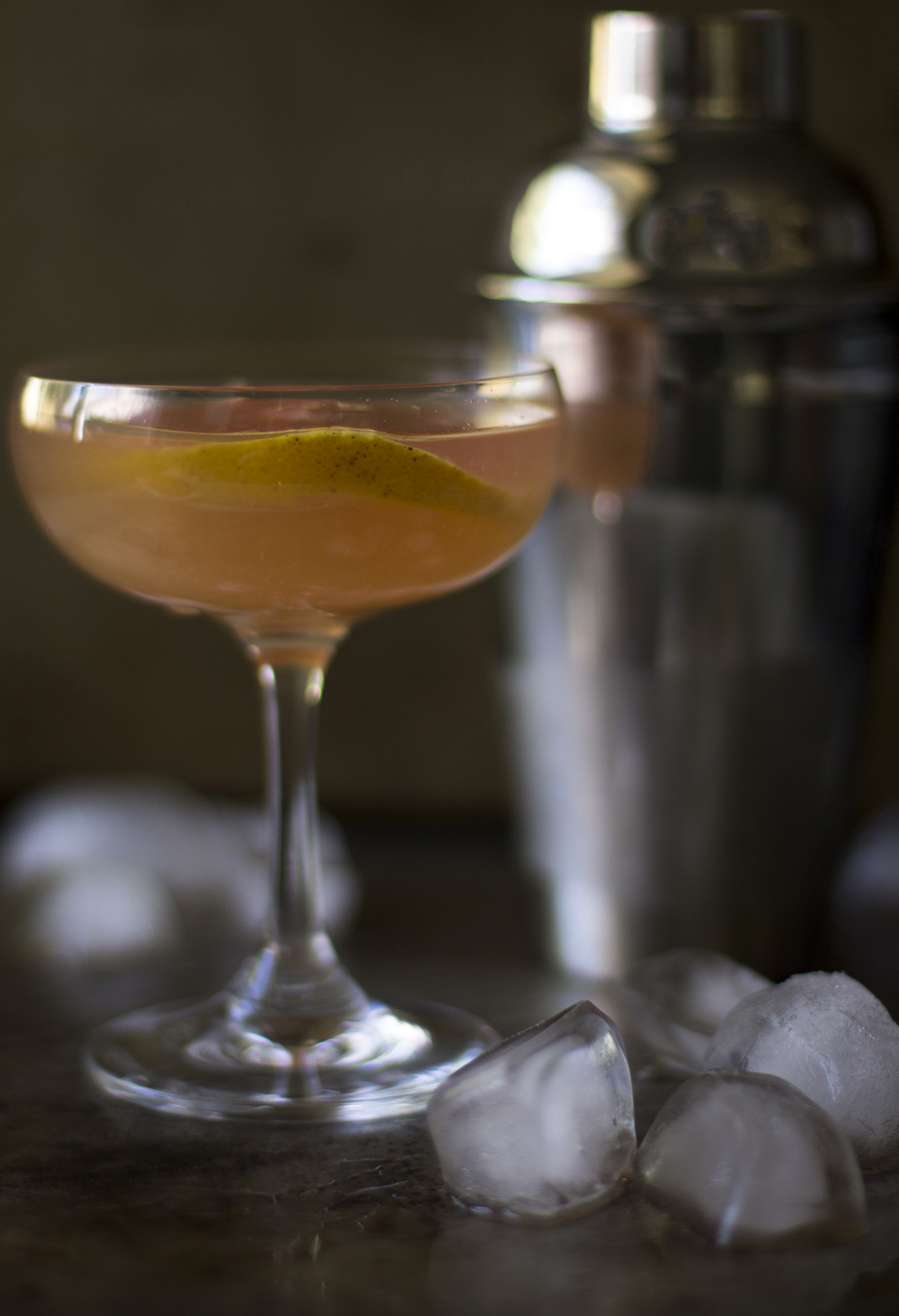 Grapefruit French Gimlet: My Diary of Us