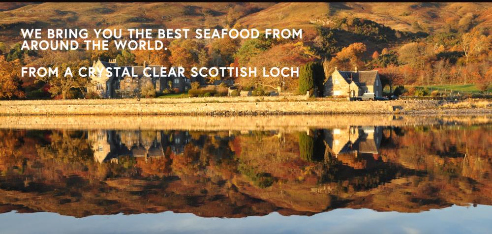 w03 Scotland page.png