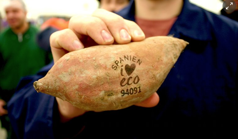 Trials of plastic-free laser labels have begun with sweet potatoes and avocados. Photograph: ICA/Nature & More (Guardian)
