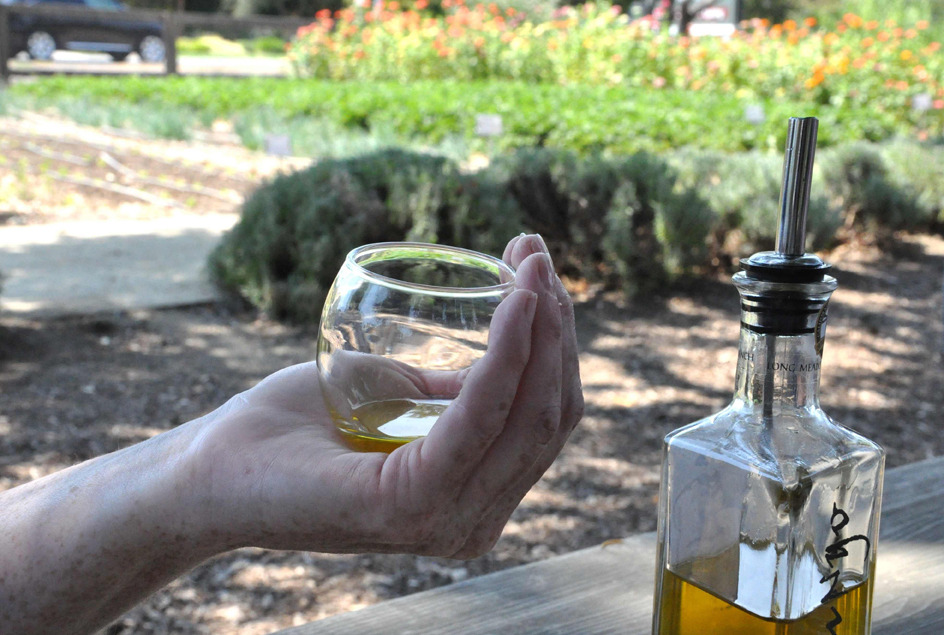 Olive oil tasting at  Long Meadow Ranch  in Napa, California