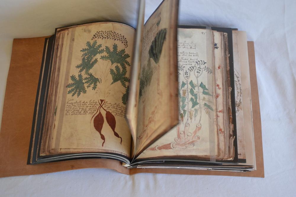 Voynich Prints